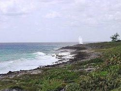 coastline82b7