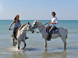 horseback-riding82b7