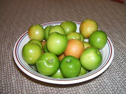 ju-plums82b7
